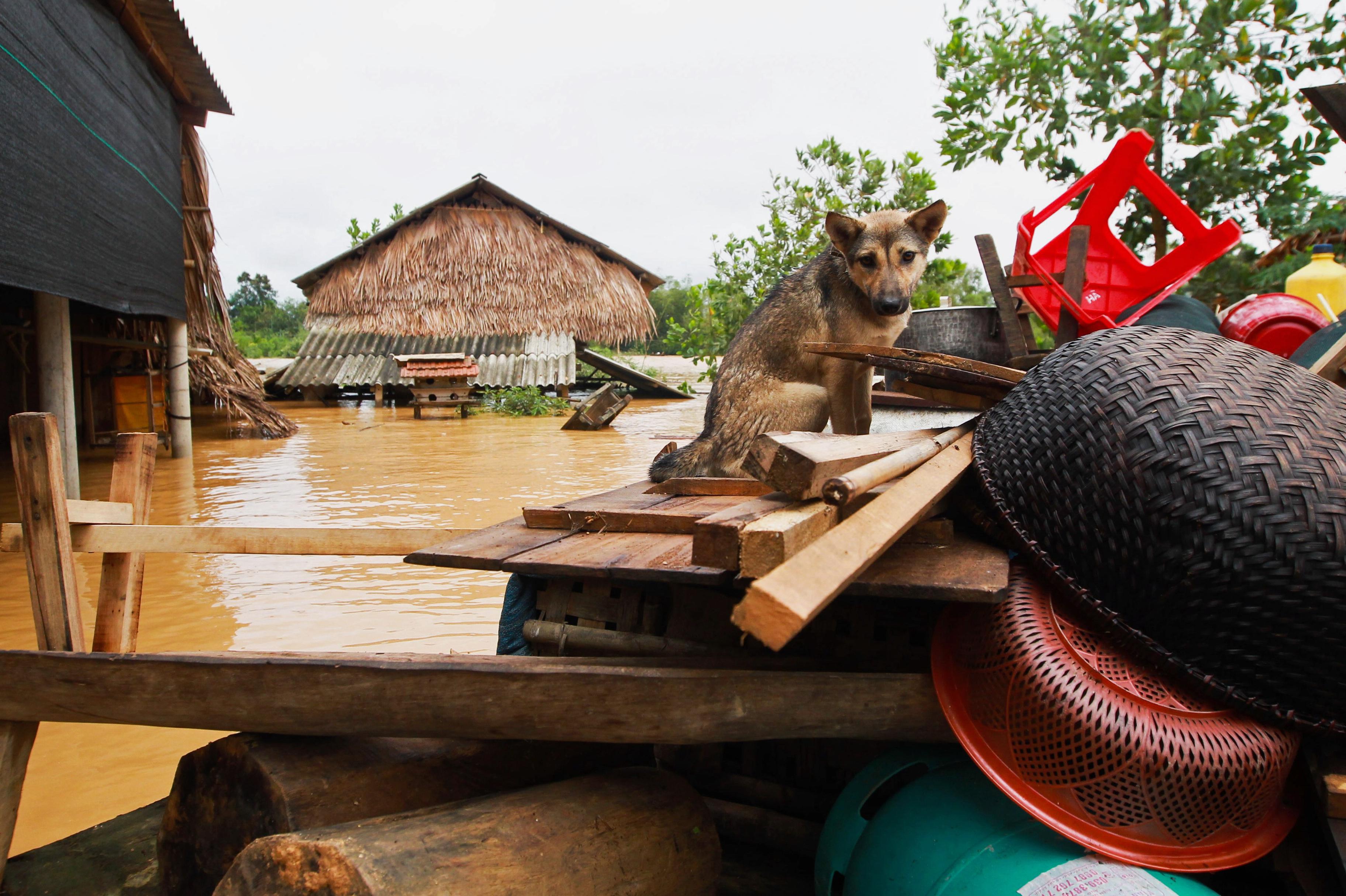 Gây Quỹ Từ Thiện Lũ Lụt Miền Trung